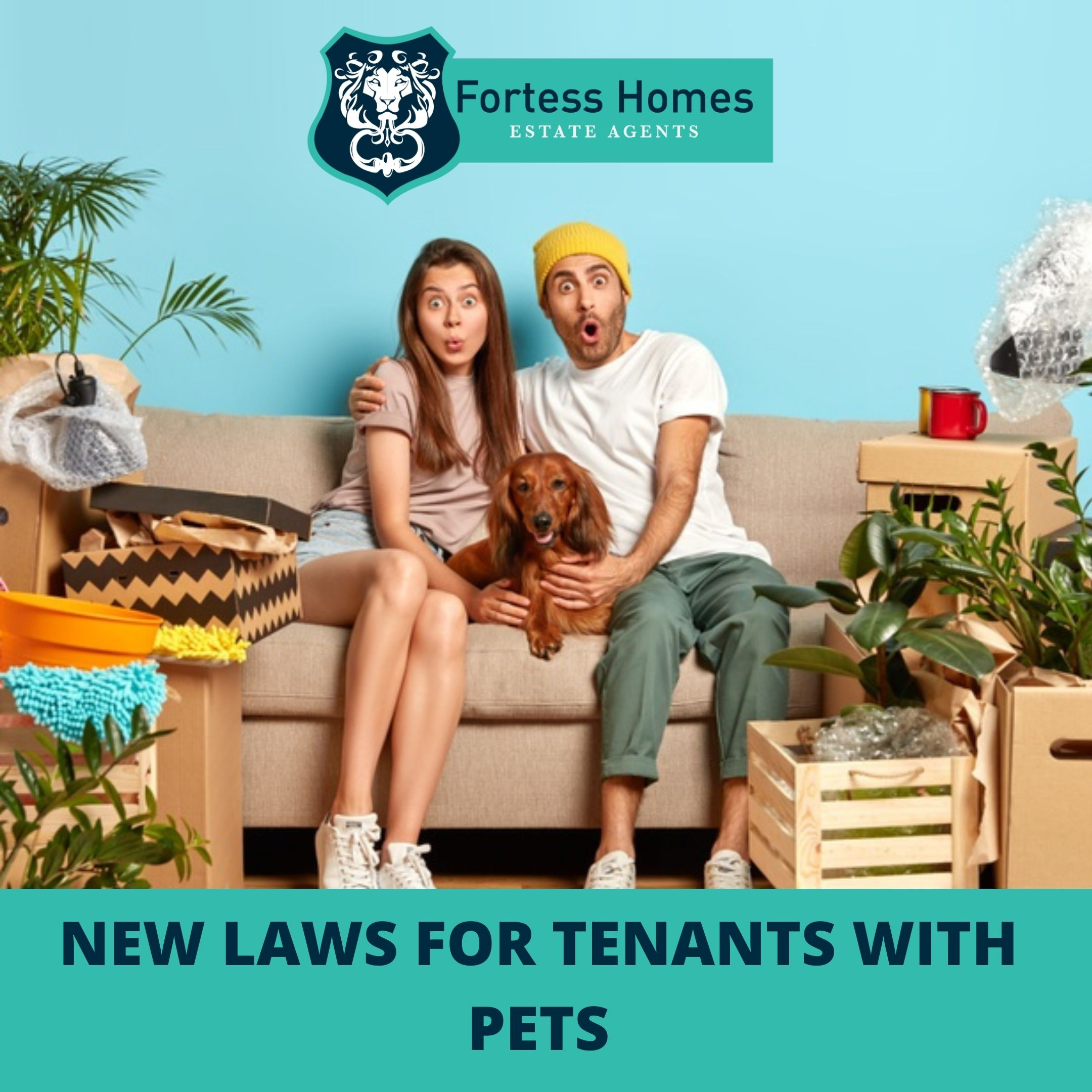 NEW LAWS FOR TENANTS WITH PETS